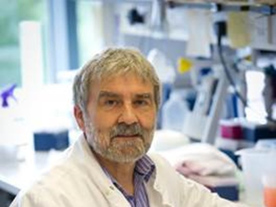 Professor Paul Brenchley